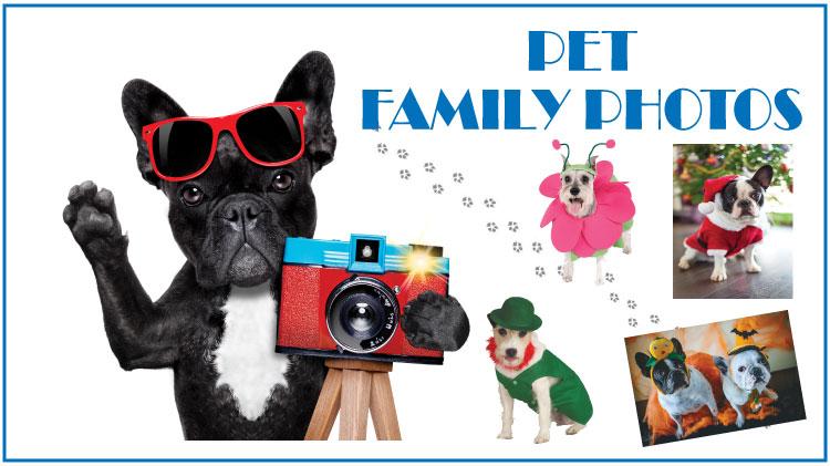 Pet Family Photos