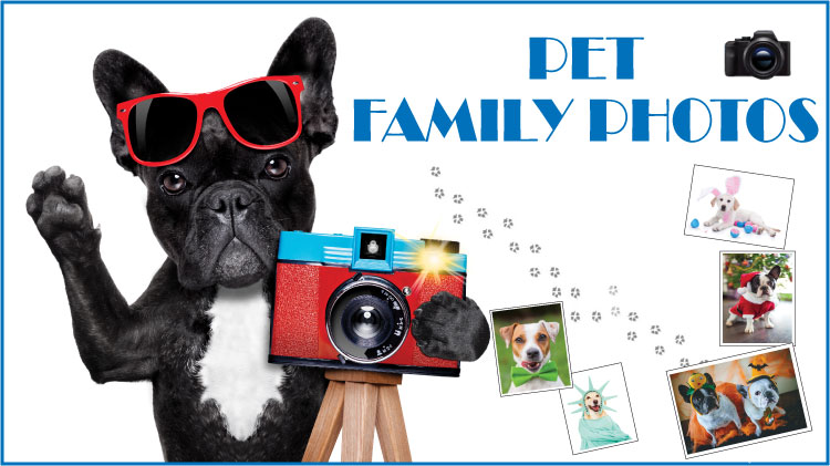 Pet Family Photos